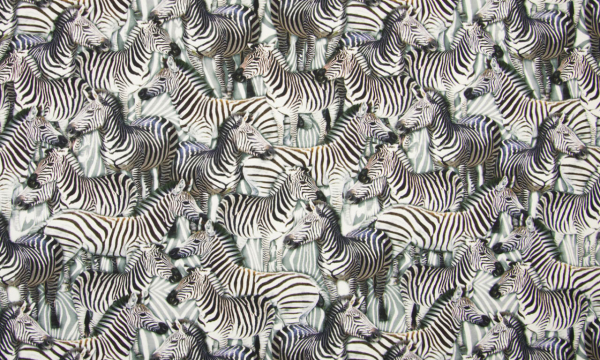 Digital Jersey ~ Zebra