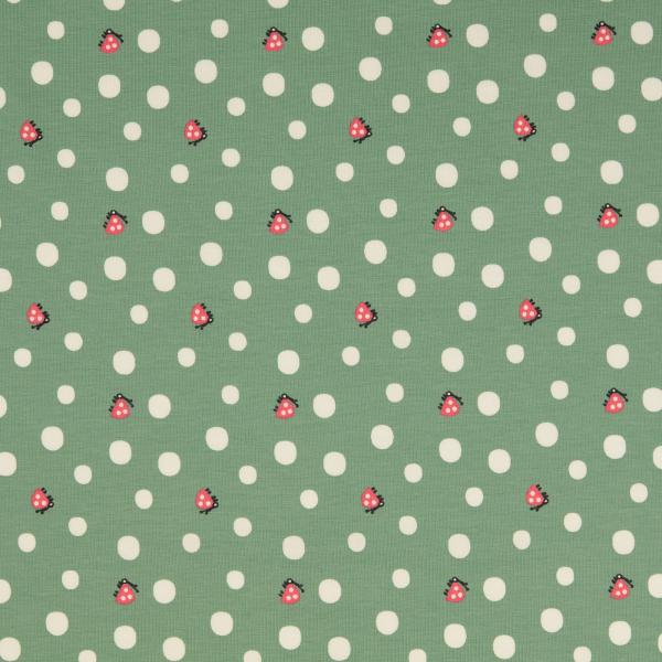 ORGANIC Jersey ~ Marienkäfer & Punkte auf Grün