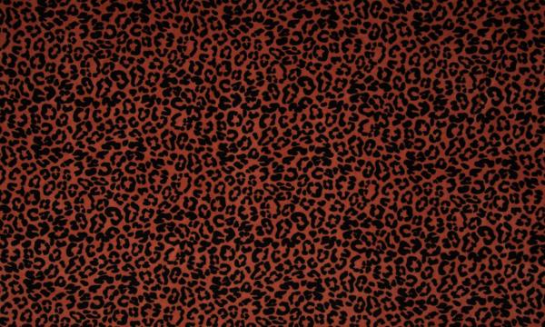Nicki Organic Cotton ~ Leoparden Muster auf Terra