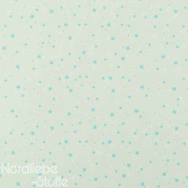 Dekostoff ~ türkise Sterne auf Mint