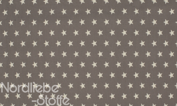 Baumwolle ~ Sterne auf Silbergrau