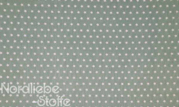 Baumwolle ~ Sterne auf Lindgrün