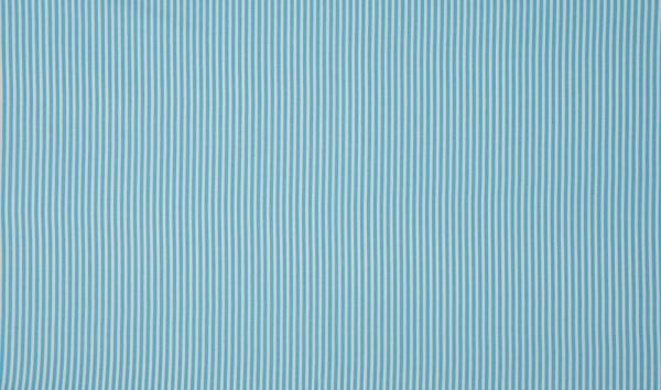 Baumwolle ~ zarte Streifen Hellblau Weiß